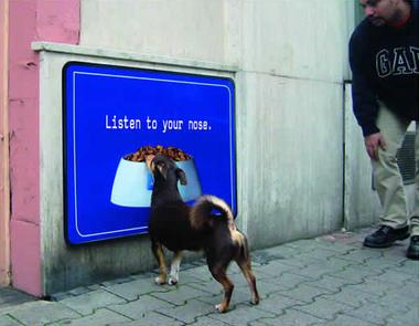leo_dogs.jpg