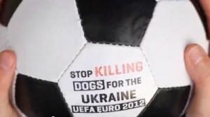 dog_ukraine