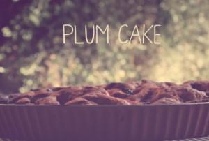 plumcake